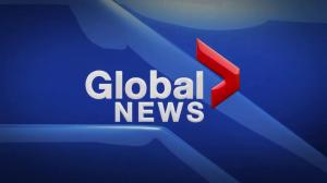 Global News at 5 Edmonton: Jan. 4