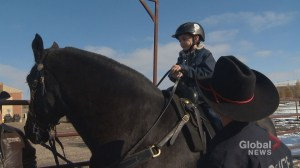 Calgary police rodeo association helps 7-year-old cowboy: 'Rodeo is like a close-knit family'