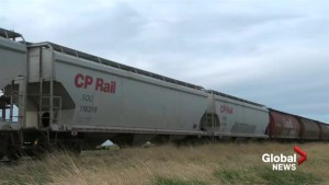 Canadian Pacific breaks record for shipping grain in month of October