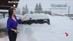 Massive winter storm dumps more than 30 centimetres of snow in B.C.