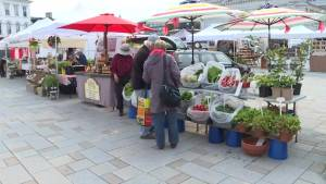 Market Square vendors have their say