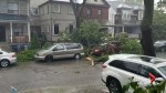 Storm blows through GTA knocking down trees, power lines