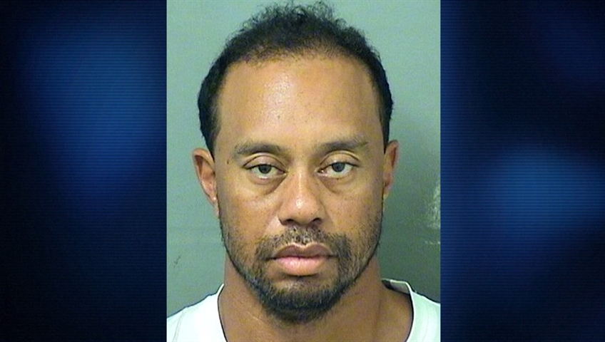 Tiger Woods blames medication for DUI charge, says alcohol ...