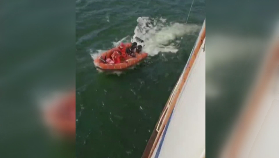Click to play video: 'BC Ferries crew rescues man overboard'