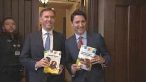 Federal Liberals deliver budget