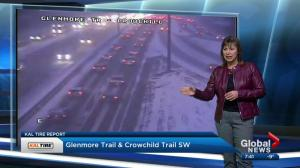News blooper: sheep interrupts Leslie Horton's traffic report