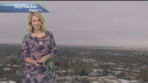 3-day forecast: Mild weather and moisture move in this week