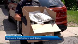 York Regional Police bust organized crime ring