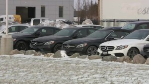 Luxury vehicles in Winnipeg stolen by thieves using forged documents