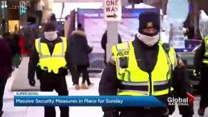 Super Bowl LII security measures