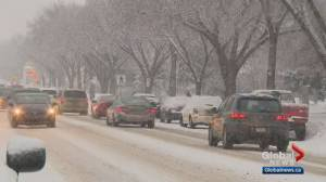 Tuesday morning snow causes nearly 70 crashes in Edmonton