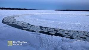 Discs of ice break off to form ice roundabout in Newfoundland