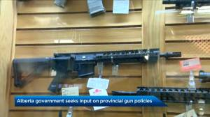 Alberta seeks input on the province's firearms policies (01:41)