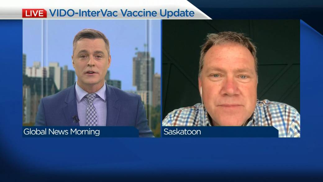 'Promising first phase for VIDO-InterVac vaccine development'