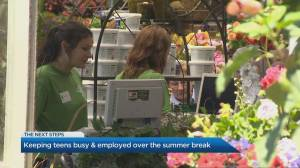 How teens can keep busy over the summer break (03:11)