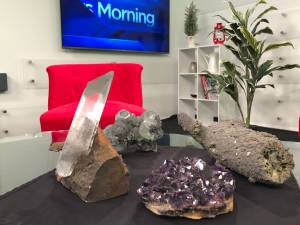 Gems, Minerals and Fossils to rock out in Peterborough