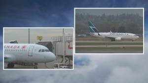 Travel Best Bets: Restoring domestic flights following the pandemic (03:56)