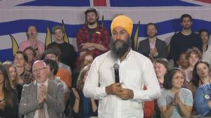 Federal Election 2019: Singh says he 'wasn't joking' about Trump impeachment