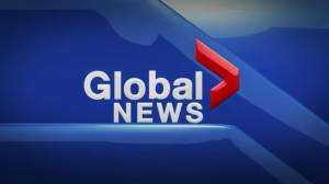 Global News Hour at 6 Edmonton: Nov. 15