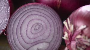 Salmonella outbreak in the U.S. and Canada may be linked to red onions