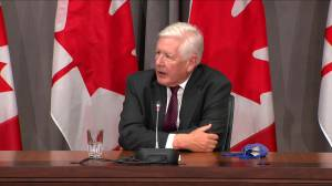 "Does Bob Rae support a prisoner exchange to secure the release of the ""Two Michaels"" held in China?"
