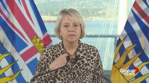 B.C. officials announce new vaccine orders for health care workers (03:57)