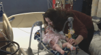 Leduc family fighting for treatment for baby's rare genetic disorder