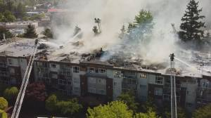 Dozens displaced as 3-alarm fire consumes Surrey apartment building (01:36)