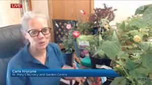 Get Gardening: Prickly plants (04:24)