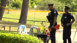 Toronto police appealing for leads after shooting that sent 3 kids to hospital (02:21)