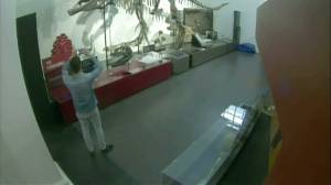 CCTV shows man breaking into Australian museum, taking selfies