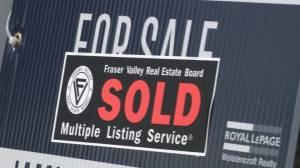 Vancouver housing market experiences low vulnerability rate: CMHC (02:16)