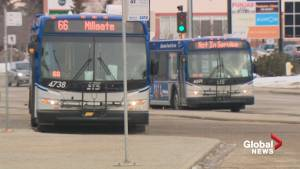 Leduc County pulls out of Regional Transit Service Commission (01:29)
