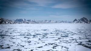 Rising temperatures shrink Arctic sea ice to second-lowest level on record (01:18)