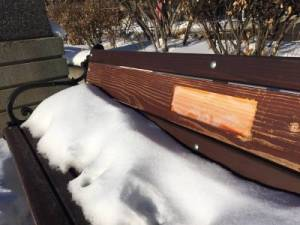 Edmonton police are investigating after 51 memorial plaques were stolen
