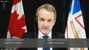 O'Regan rebuffs calls to impose sanctions on U.S. over Keystone XL cancellation (13:14)