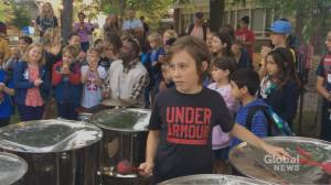 Rosedale school community outraged over steelpan music program cuts