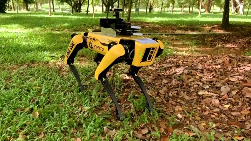 Robot 'dog' named Spot to help social distancing efforts at ...