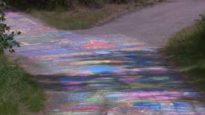 Thousands of Saskatoon residents attempt to break record for longest chalk mural