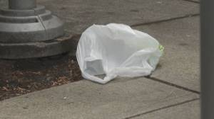 Ottawa announces plastics that will be banned nationwide in 2021