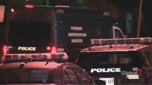 Man in his 20s dies in hospital after being stabbed in north Etobicoke (00:43)