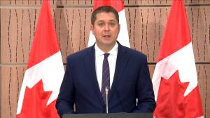 Coronavirus outbreak: Parliament should be considered an 'essential service' Scheer says