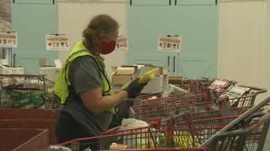 B.C. food banks feel strain of holiday season during pandemic (02:07)
