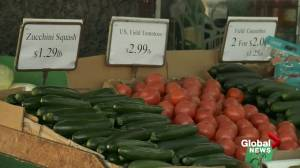 B.C. food banks brace for spike in grocery costs