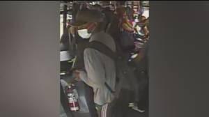 Saanich police look for suspect in bus sex assault (00:42)