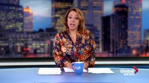 Global News Morning headlines: Monday, 21 October 2019