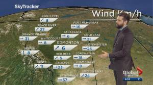 Edmonton Weather Forecast: Feb. 20