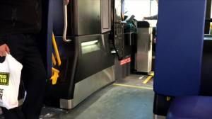 Winnipeg Transit 25-year master plan approved by council (01:37)