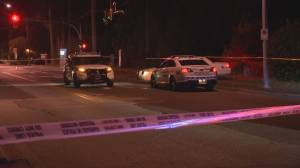 Overnight shooting in South Surrey leaves one dead