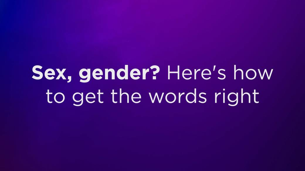 Click to play video: 'Sex, gender? Here's how to get the words right'